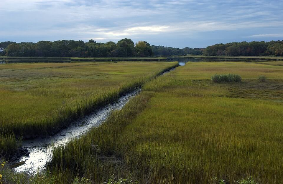 A Region to Save: Buzzards Bay Coalition