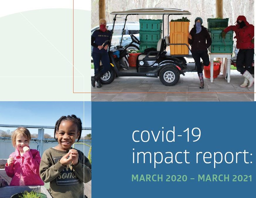 Recently published Impact Report provides an overview of the SouthCoast Community Foundation COVID-19 response.